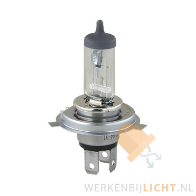 12V H4 60/55W Halogeen