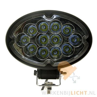 36W LED ovale verstraler