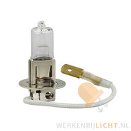 12v-100w-halogeen-h3